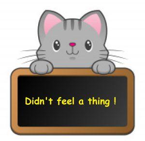 Didn't feel a thing